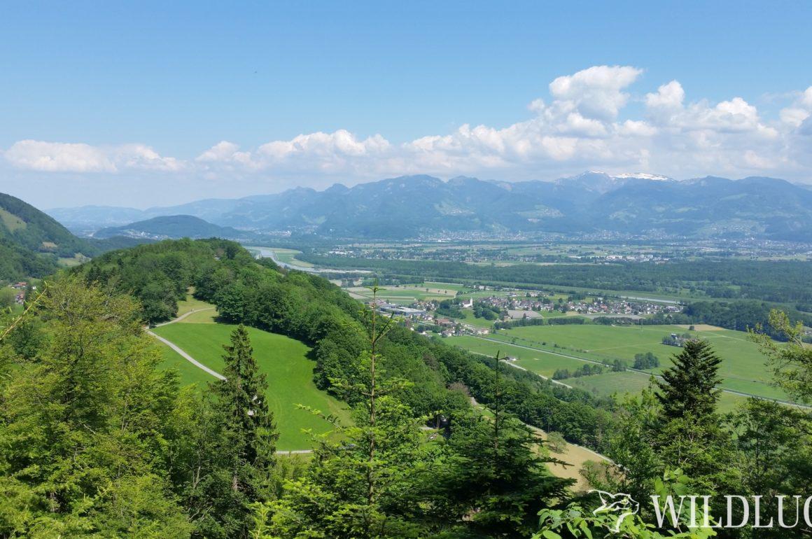 Rundwanderung Plona – Alp Rohr – Eidenen